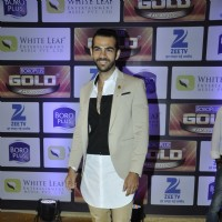Karan V Grover at Zee Gold Awards 2016