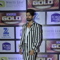 Vishal Singh at Zee Gold Awards 2016