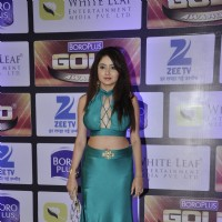Leena Jumani at Zee Gold Awards 2016