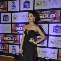 Sriti Jha at Zee Gold Awards 2016