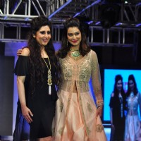 Payal Rohatgi at The Ssja Silver Nite Fashion Show