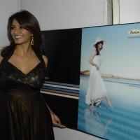 Diana Hayden at Society Interior Awardsat The Club