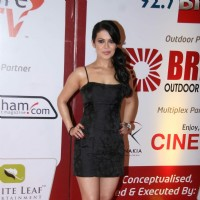 Guest at Boro Plus Gold Awards red carpet at Film City