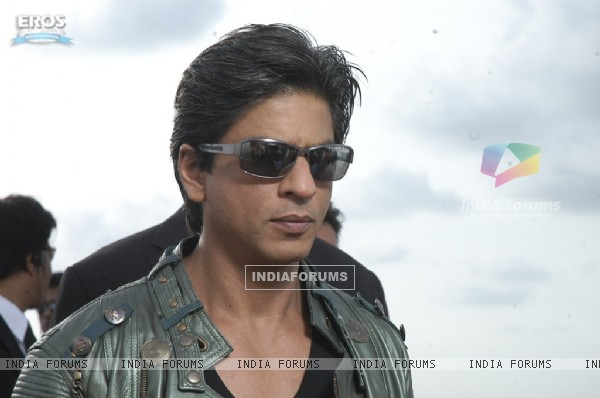 Hot and Handsome Shahrukh Khan