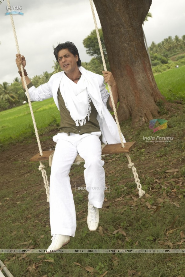 Shahrukh sitting on a swing (11136)