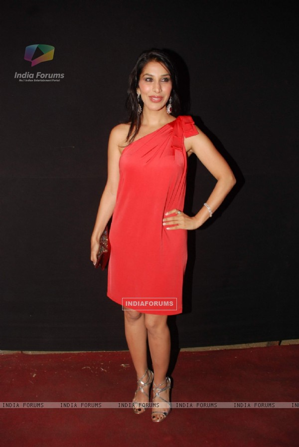 Sophie Chaudhary at the Pearls Waves Concert,  Bandra Kurla Complex in Mumbai. .
