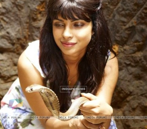 Priyanka Chopra in the movie 7 Khoon Maaf (117449)