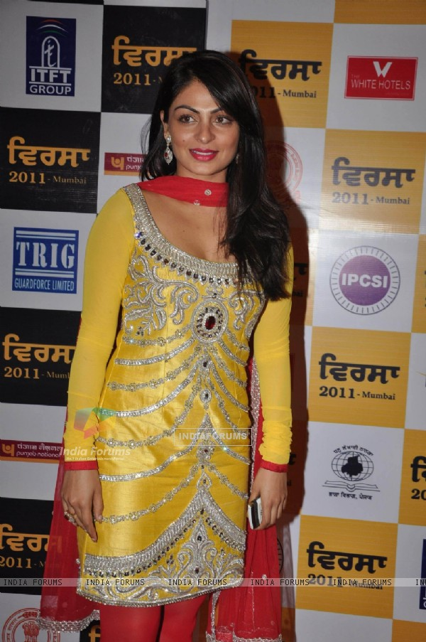 Celebs at Punjabi Virsa 2011 awards at JW Marriott. .