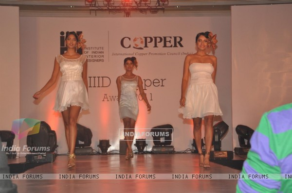 Models walk the ramp for IIID Copper Fashion Show 2011
