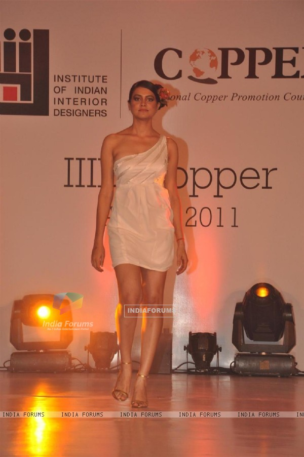 Model walks the ramp for IIID Copper Fashion Show 2011