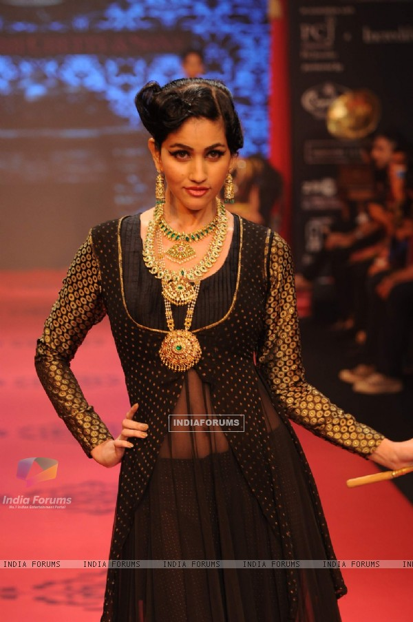 Model walks the ramp for C Krishniah Chetty & Sons at IIJW 2011