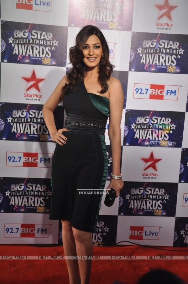 Big Star Entertainment Awards at Bhavans Ground in Andheri, Mumbai