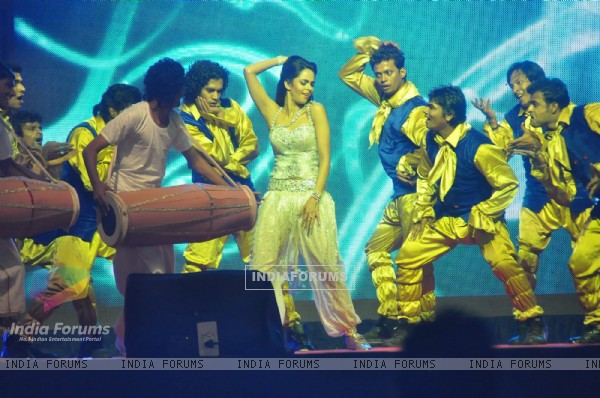 Mallika Sherawat performing at Tulip Star on the eve of New Year.  .