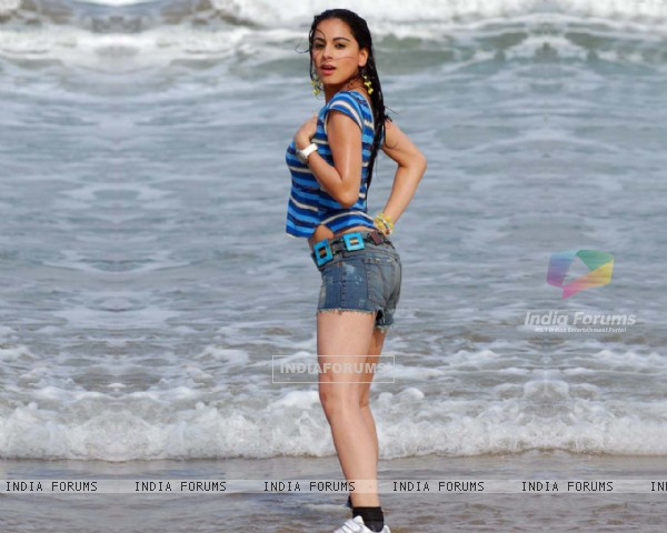Shradhha Arya pic from South Indian movie Romeo