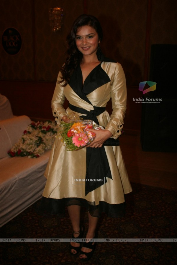 Aashka Goradia at Golden Achiever Awards 2012