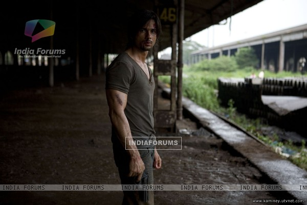 Shahid Kapoor in Kaminey movie (20355)