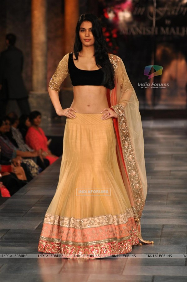 Ankita Shorey at Mijjwan Sonnets in Fabric Fashion Show