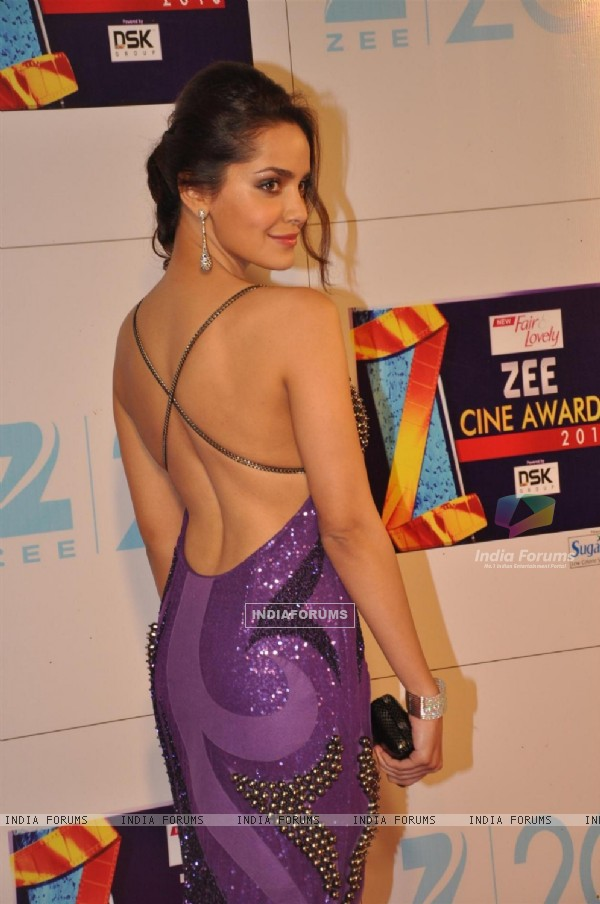 Bollywood actress Shazahn Padamsee at Zee Cine Awards 2013 at YRF Studios in Andheri, Mumbai.