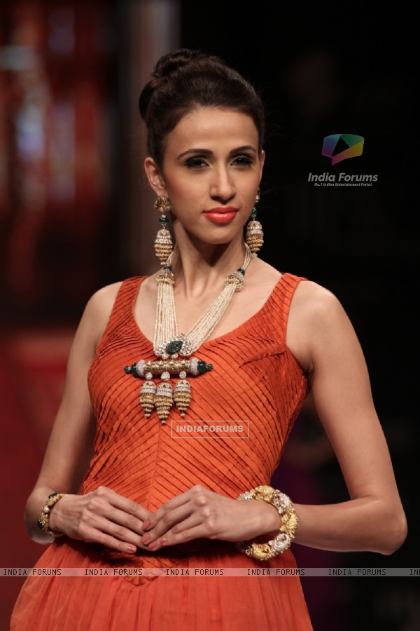 Models walks ramp for Birdhichand Ghanshyamdas at IIJW Delhi 2013 Day 1