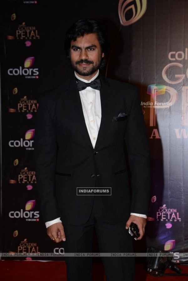 Gaurav Chopra at the COLORS Golden Petal Awards 2013