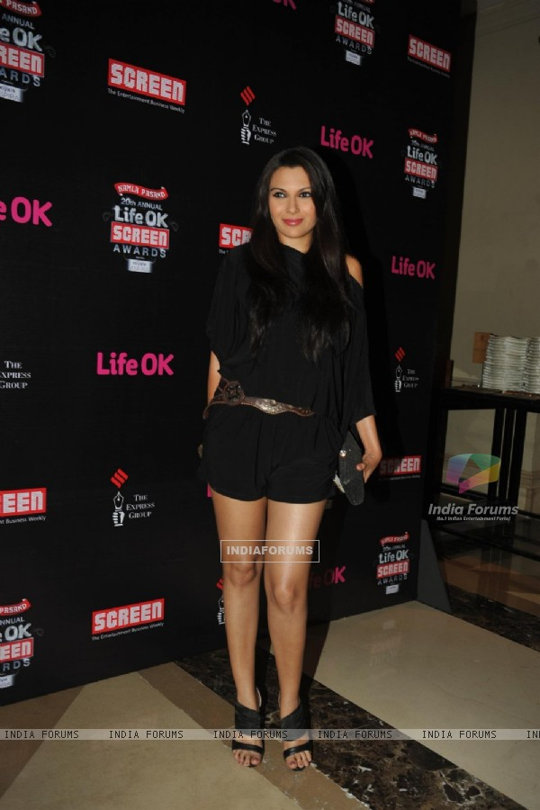 Maria Goretti was at the 'Life Ok Screen Awards' Nomination Party