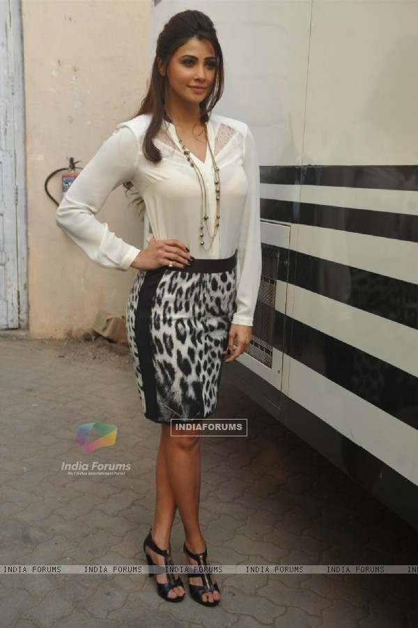 Daisy Shah at the Promotion of 'Jai ho'