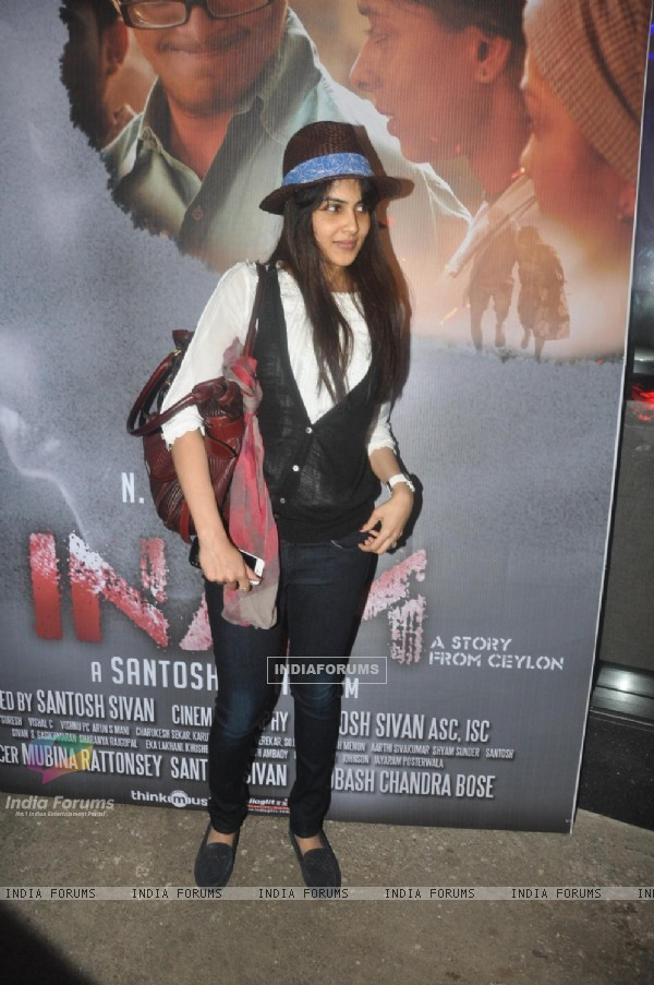Genelia Dsouza at the Screening of Sri Lankan Film 'Inam'