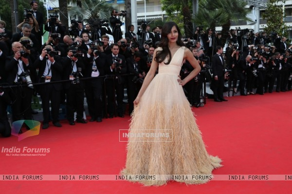 Freida Pinto at Cannes Film Festival