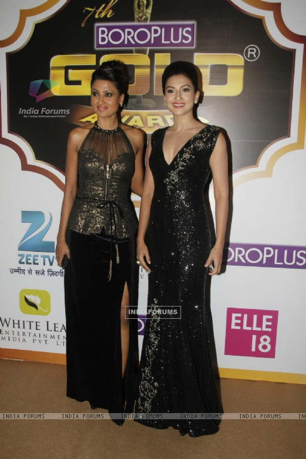 Nigaar Z. Khan and Gauahar Khan were at the Boroplus Zee Gold Awards 2014