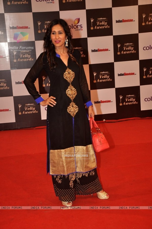 Teejay Sidhu was at the Indian Telly Awards