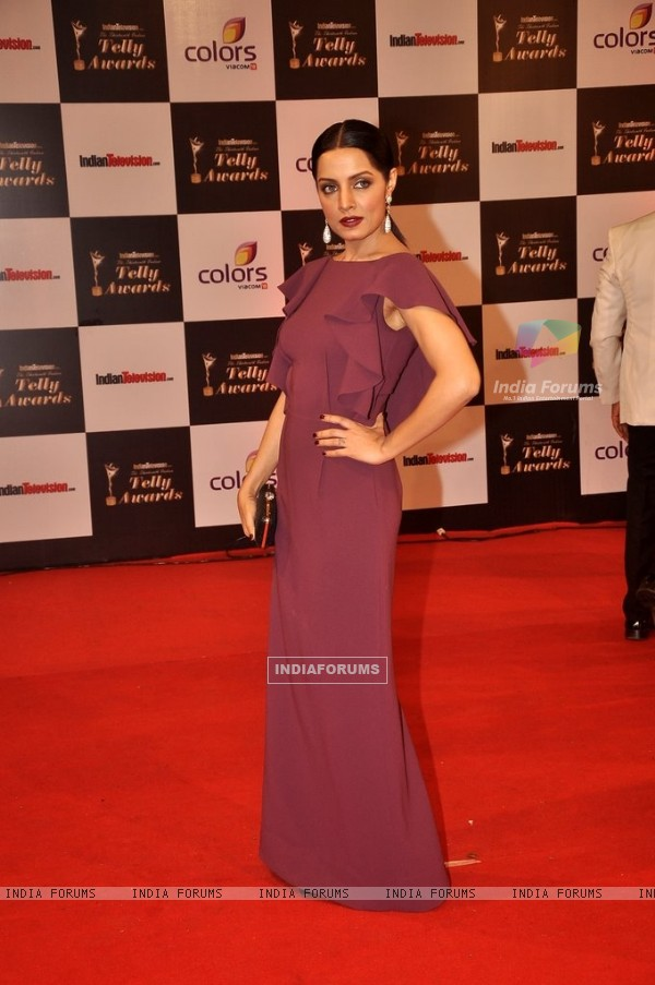 Celina Jaitly was seen at the Indian Telly Awards