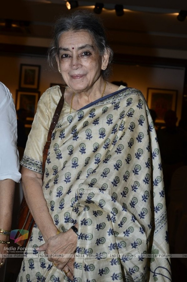 Lalita Lajmi poses for the media at the Promotion of Rang Rasiya with an Art Exhibition