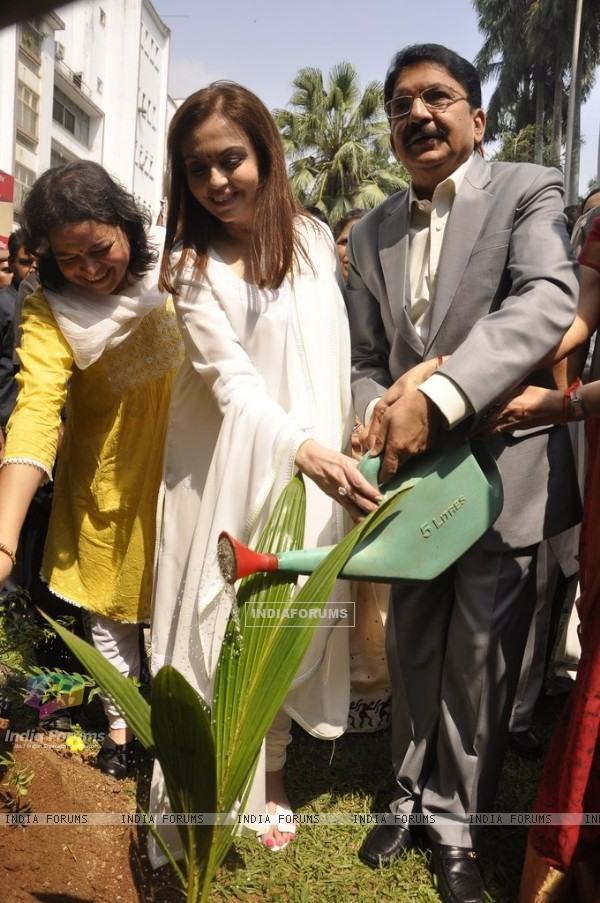 Nita Ambani watering the plant during the Cleanliness Drive