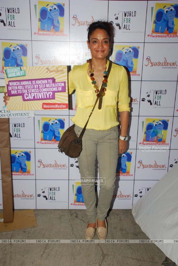 Sandhya Mridul at the Pet Adoptathon 2014