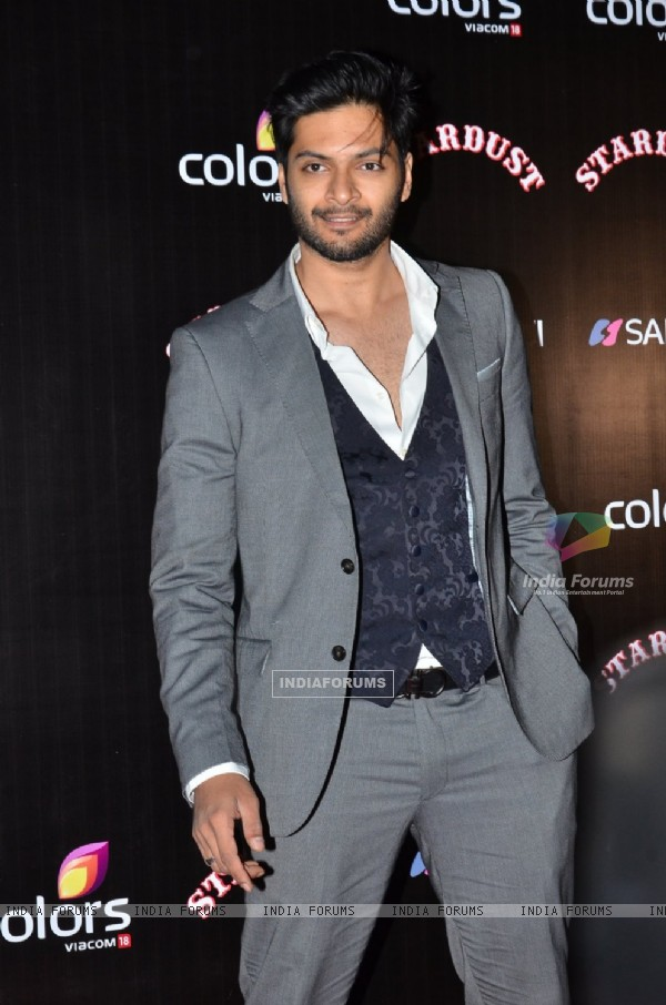 Ali Fazal poses for the media at Sansui Stardust Awards Red Carpet