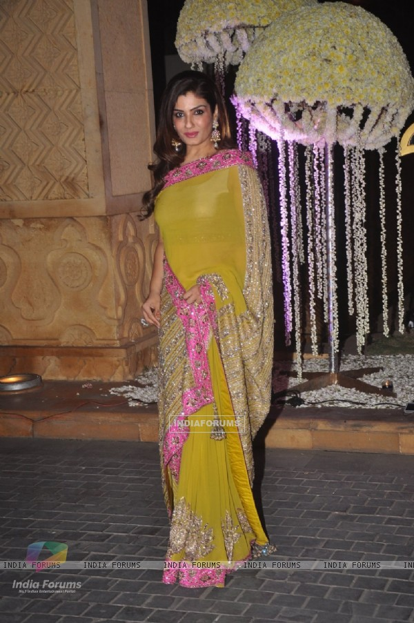 Raveena Tandon poses for the media at the Wedding Reception of Riddhi Malhotra and Tejas Talwalkar