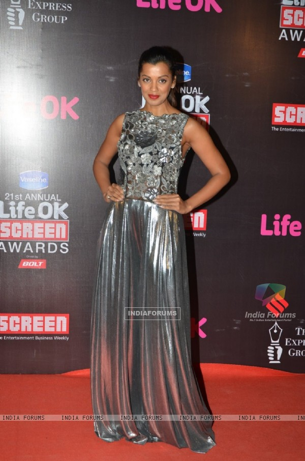 Mugdha Godse poses for the media at 21st Annual Life OK Screen Awards Red Carpet