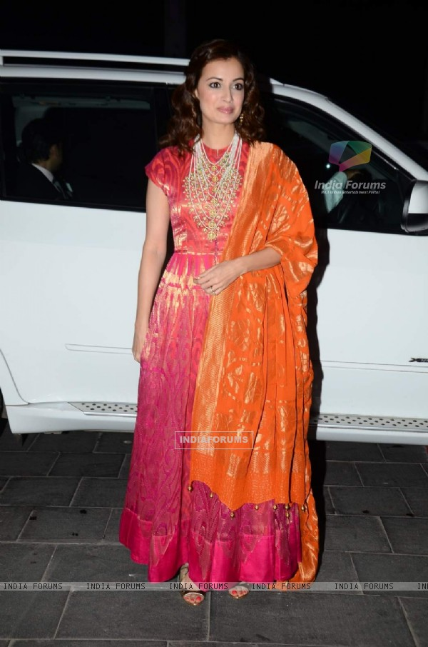 Dia Mirza poses for the media at Tulsi Kumar's Wedding Reception