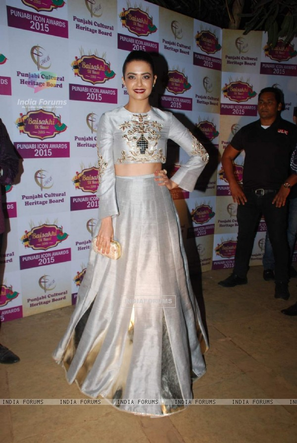 Surveen Chawla poses for photographers at Punjabi Icon Awards