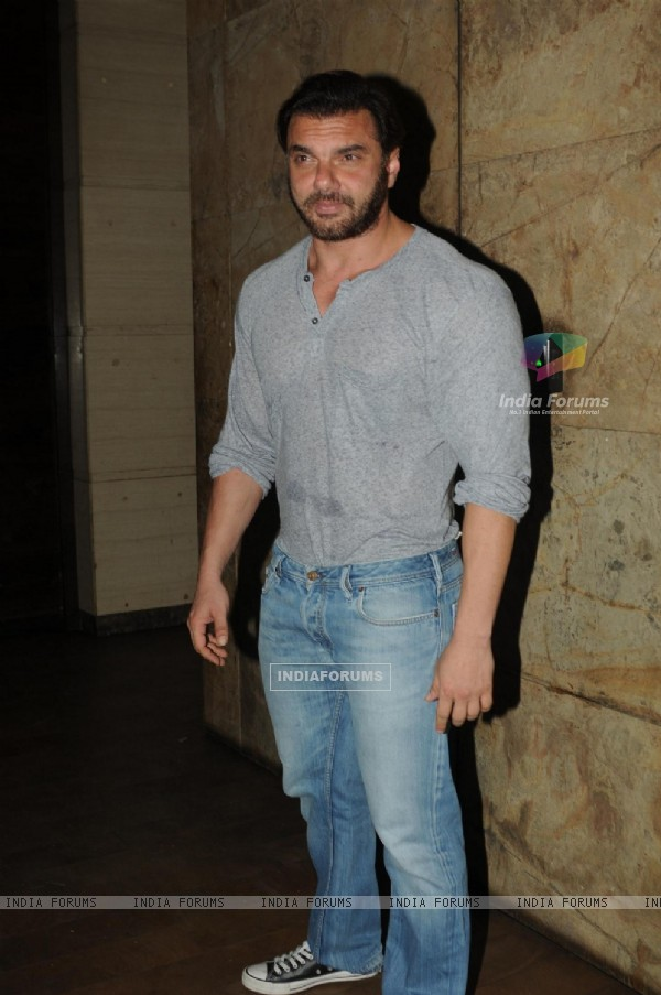 Sohail Khan at Screening of Tanu Weds Manu Returns