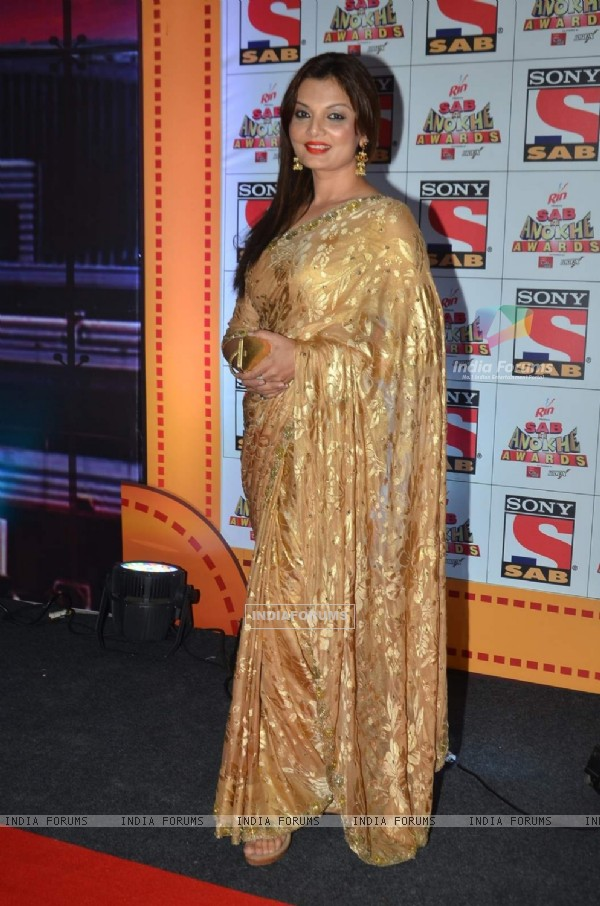 Deepshikha Nagpal poses for the media at SAB Ke Anokhe Awards