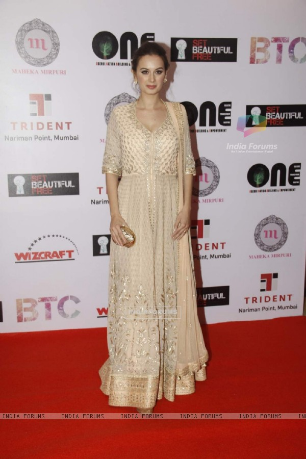Evelyn Sharma at Vivek Oberoi's Charity Event