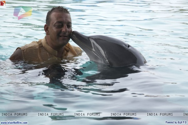 Sanjay Dutt with a Dolphin (37813)