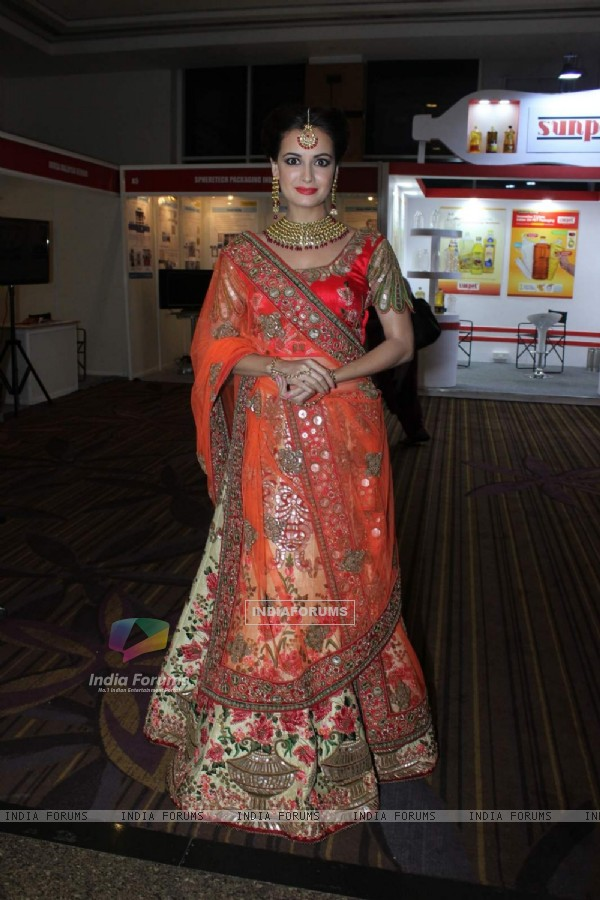 Dia Mirza at the Globoil Awards