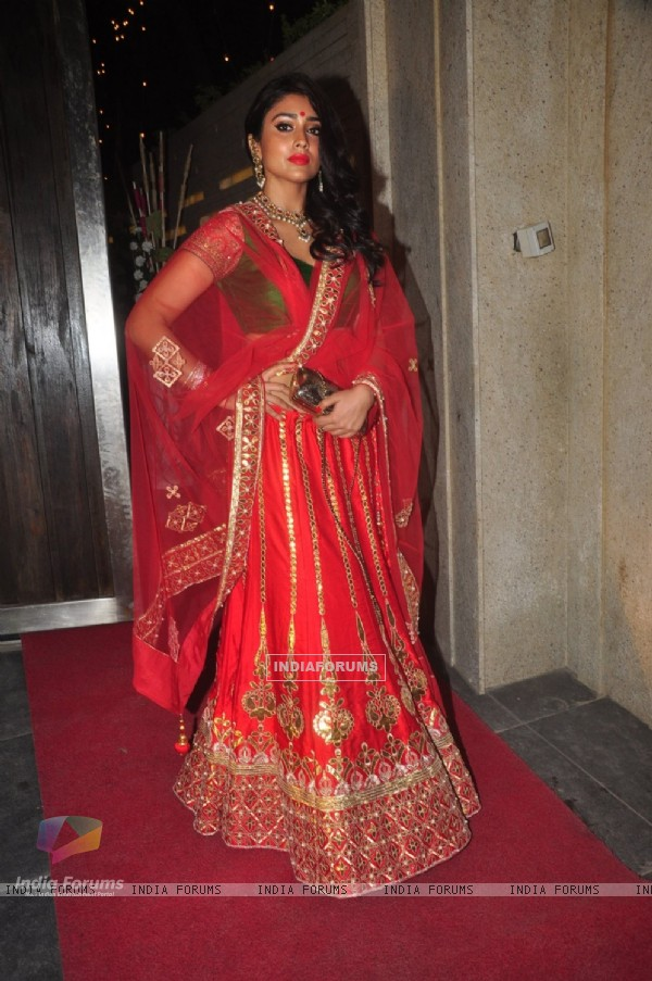 Shriya Saran at Sushil Gupta's Diwali Bash