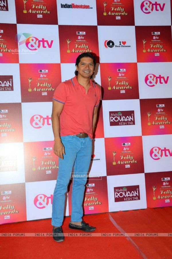 Shaan at Indian Telly Awards
