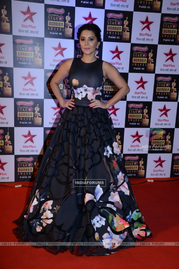 Minissha Lamba at the 22nd Annual Star Screen Awards