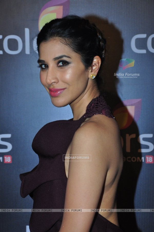 Sophie Choudry at Colors TV's Red Carpet Event