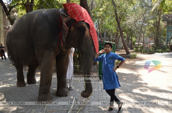 Neel Sethi snapped with an elephant at his International Tour for his upcoming movie The Jungle Book