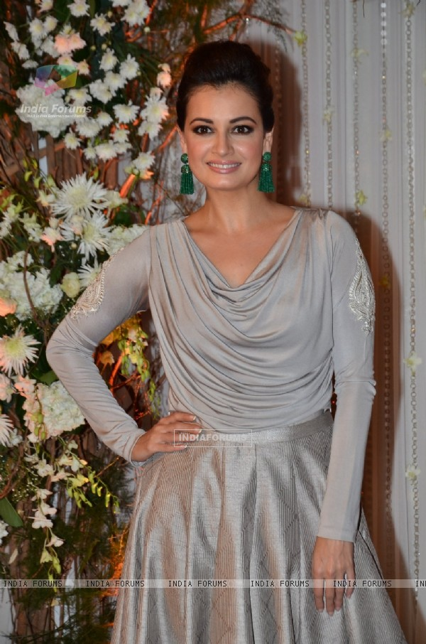 Dia Mirza at Karan - Bipasha's Star Studded Wedding Reception